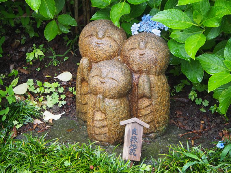 ハイシーズン(6月)の鎌倉。紫陽花なら長谷寺へ!