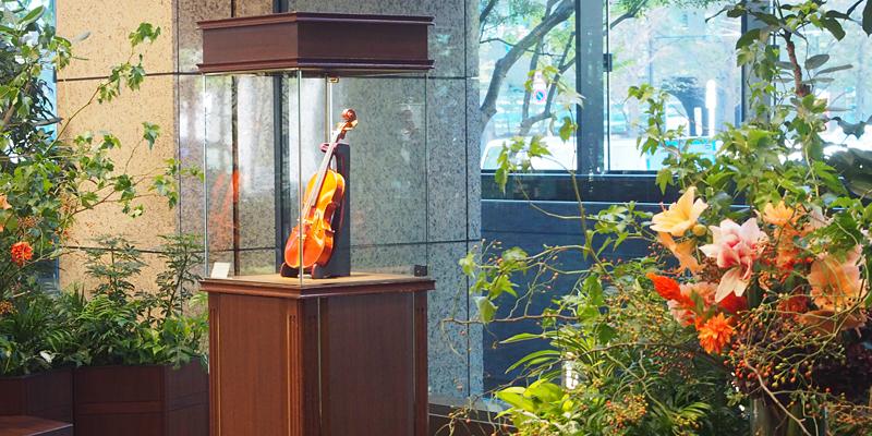 ヴァイオリン展示会