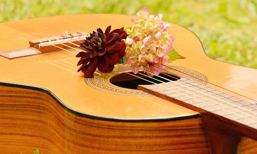 DTM アコースティックギター