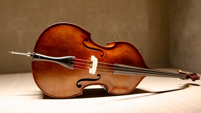 弦楽器 コントラバス