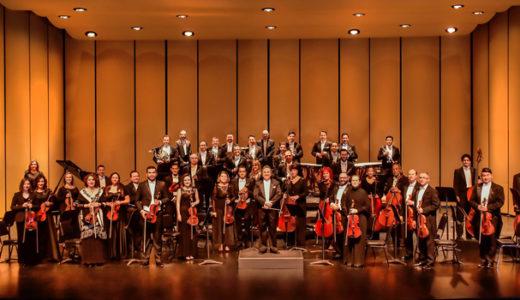 オーケストラで使われる弦楽器の種類