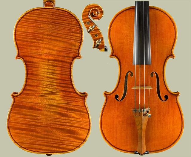 ヴァイオリン レイトスターター