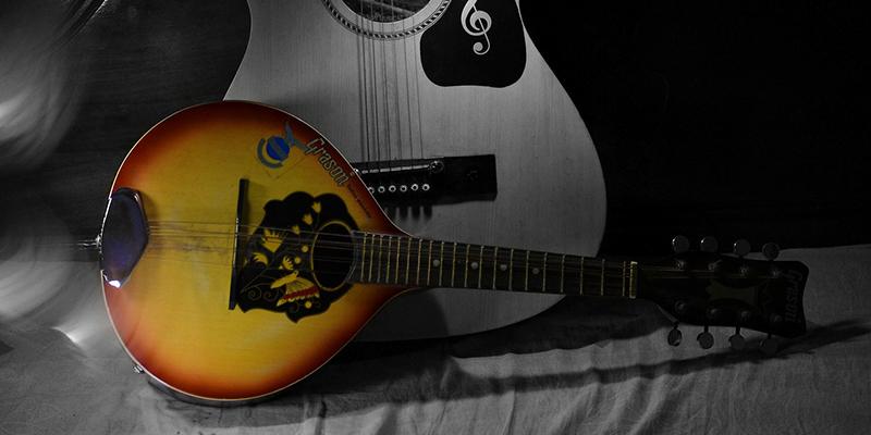 マンドリン 楽器